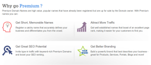 premium domain name registration